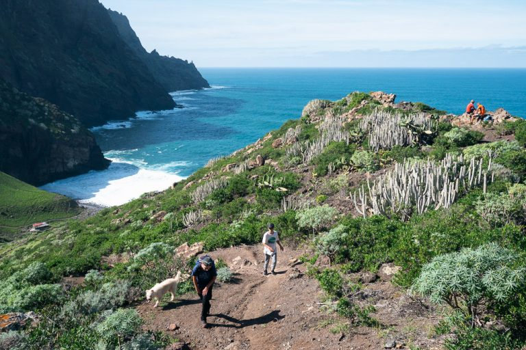 10 Of The Best Hikes In The Canary Islands